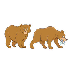 cartoon bear set standing and catching fish vector image vector image