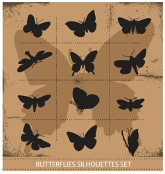Nature various symbolical butterflies set vector image vector image