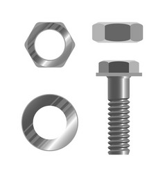 bolt fastener and several types of nuts realistic vector image vector image
