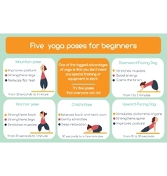 Yoga poses for beginners infographic vector image