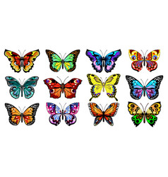 Decorative butterflies vector