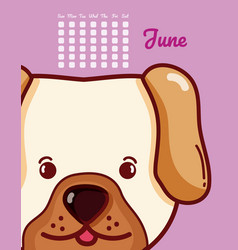 Dog and calendar cartoon concept vector