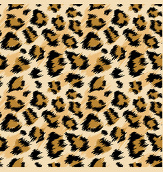 Fashionable leopard seamless pattern leopard skin vector