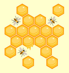 Honeycombs with bees honey background vector