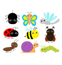 Insect set beetle ladybug ladybird dragonfly ant vector