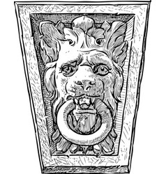 Lion snout with a ring vector