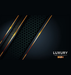 Luxurious premium black abstract background with vector