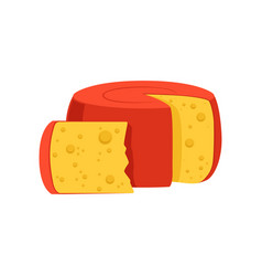 Rounded cylinder holland edam cheese covered with vector