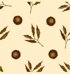 seamless pattern with hand drawn colored chestnut vector image