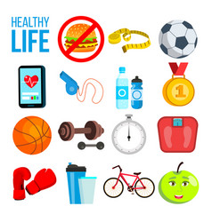 sports nutrition concept vitamins minerals vector image