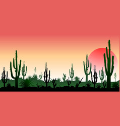 Stony desert the sunset vector