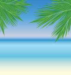PalmLeaves11 vector image vector image