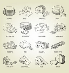 sketch of different cheeses icons vector image