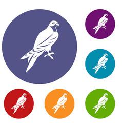 Falcon icons set vector