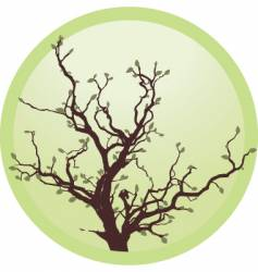 tree in circle vector image