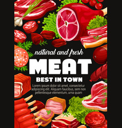 Beef and pork meat sausages ham and salami vector