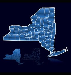 counties of new york vector image