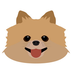 isolated pomeranian avatar vector image vector image