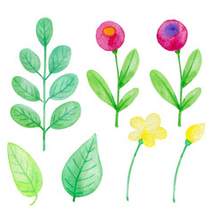 set watercolor flowers and leaves vector image