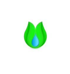Isolated abstract blue water drop in green leaf vector image vector image