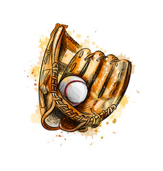 Baseball glove with ball from a splash of vector