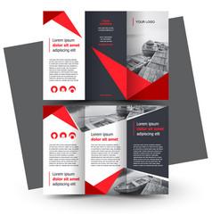 Brochure design brochure template creative vector