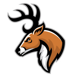 buck head mascot vector image