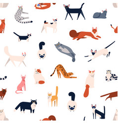 colorful different cat breeds seamless pattern vector image