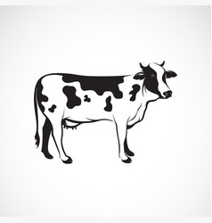 Cow on white background farm animal cow logo or vector
