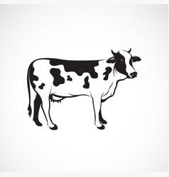 cow on white background farm animal logo vector image