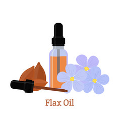 Flax natural oil seeds flowers essential oil vector