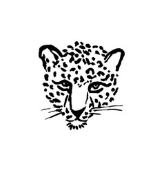 Leopard grunge print of wild vector