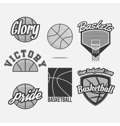 Logo set for a basketball team vector
