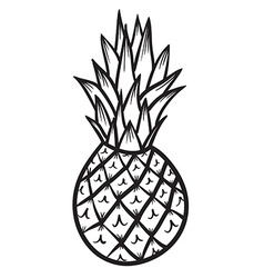 Pineapple hand drawn vector image