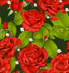 Seamless pattern of red roses on a dark green vector image