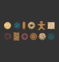 set different kind cookies vector image