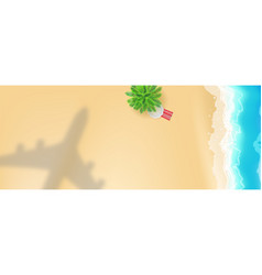 airplane shadow under seashore with palm and sun vector image