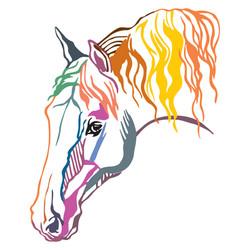 Colorful decorative portrait of horse vector