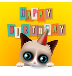 Cute happy birthday card with fun grumpy cat vector