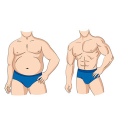 fat and fit vector image