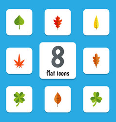 Flat icon leaves set of linden frond hickory and vector