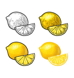 lemon slice and whole color vintage vector image