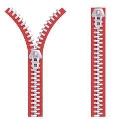 open closed zipper fly zip fastener clasp locker vector image