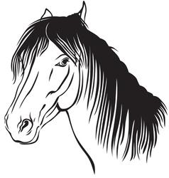 pony muzzle vector image