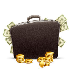 Business briefcase full money vector