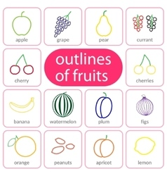Flat fruits outlined coloured vector