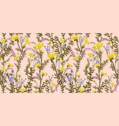 Summer designs yellow wildflowers vector