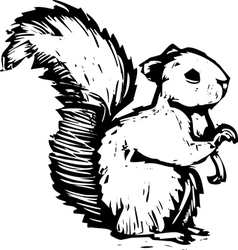 Woocut squirrel vector