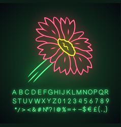 Blanket flower neon light icon gaillardia vector