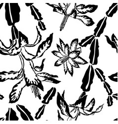 blooming cactus jumbo black and white pattern vector image